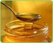 продаю мед высокого качества оптом